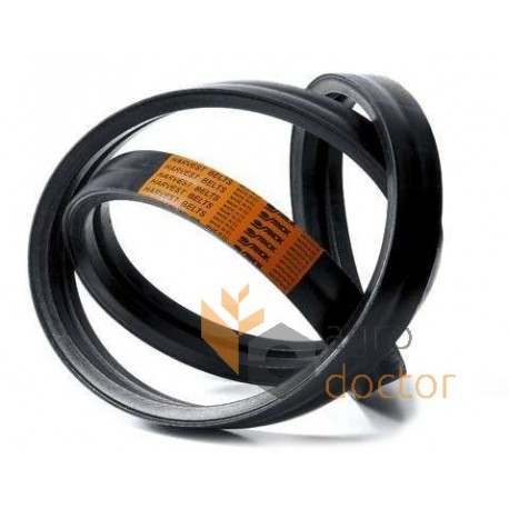 Wrapped banded belt 2HB-2630 [Stomil]