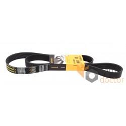 Multiple V-ribbed belt 8PK1695 [Continental Agridur]