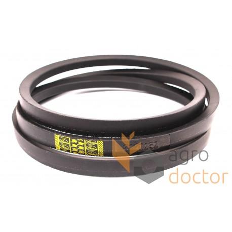 CASE IH 668902R1 Replacement Belt