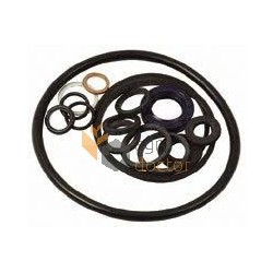 Hydraulic pump repair kit 1635948M92 Massey Ferguson (Bepco)