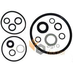 Hydraulic pump repair kit 1635948M92 Massey Ferguson