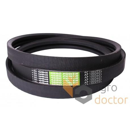 Wrapped banded belt AP1003607 [Optibelt]